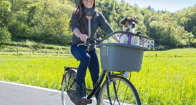 miglior trasportino da bicicletta per cani