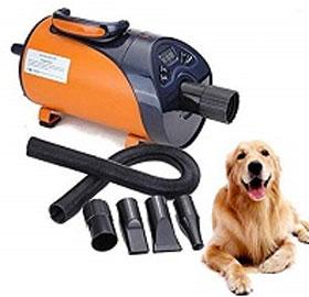 soffiatore per cane