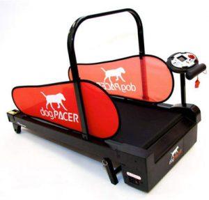tapis roulant per cani migliore