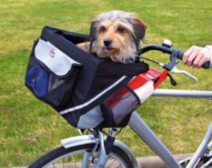 trasportino da bicicletta per cani