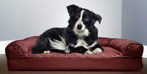 divano per cani di qualità