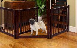 miglior recinto per cani da interno