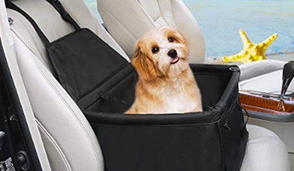 miglior seggiolino auto per cani