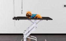 tavoli da toelettatura per cani