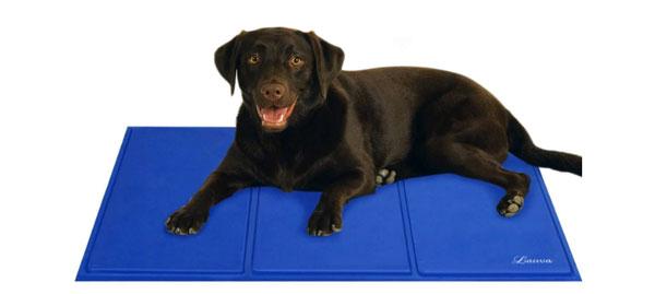 tappetino rinfrescante per cani migliore